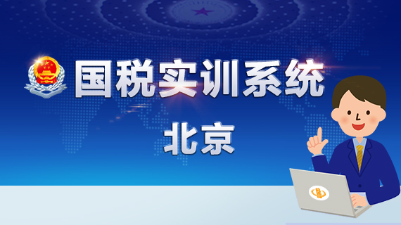 国税实训系统(北京)